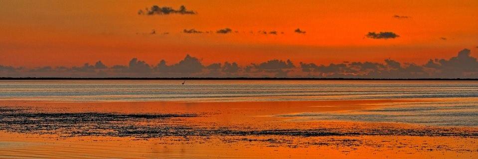 kayaking spot in florida