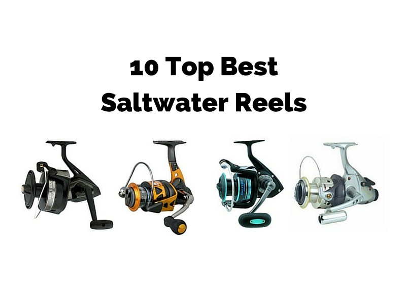 Best Saltwater Reel