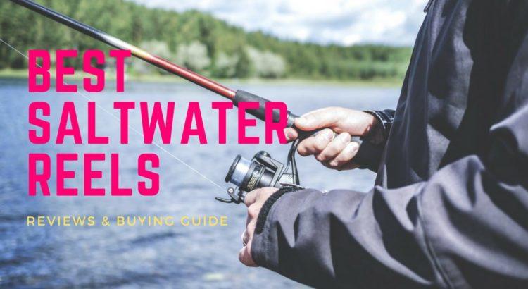 Best Saltwater Reels