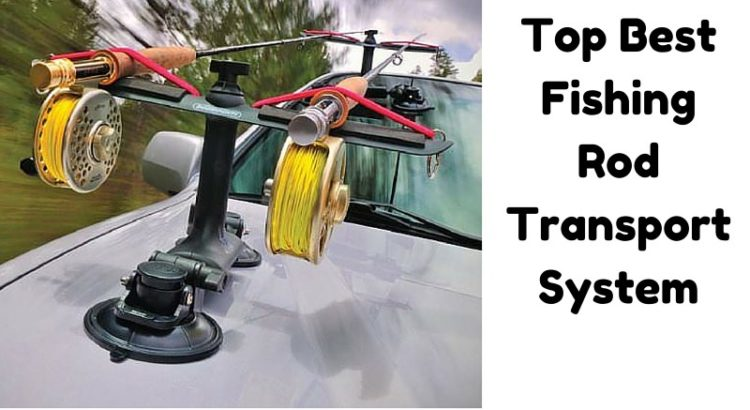 Top Best Fishing Rod Transport System