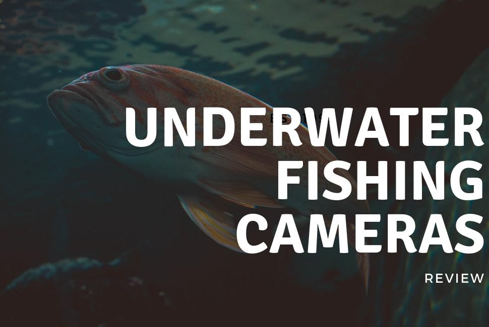 10 Best Underwater Fishing Cameras Review 2018