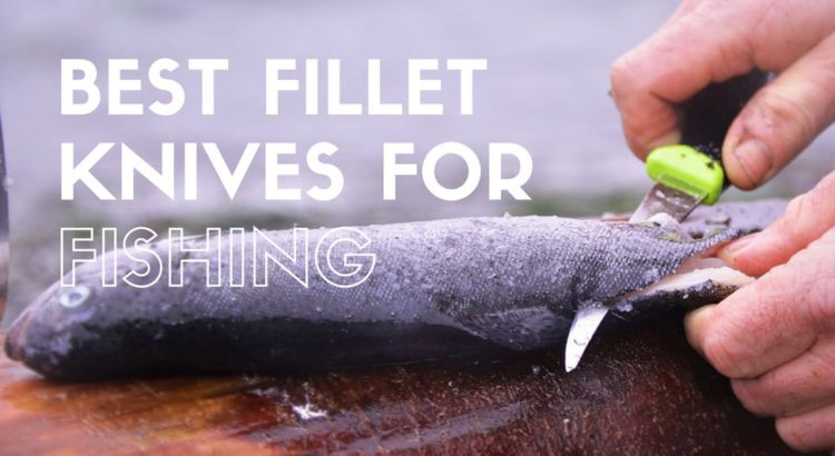 Best Fillet Knives For Fishing